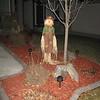 IMG_5779 43 scarecrow