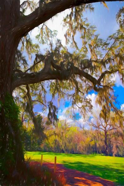 Orlando Botanical Gardens - Harry P. Leu Gardens