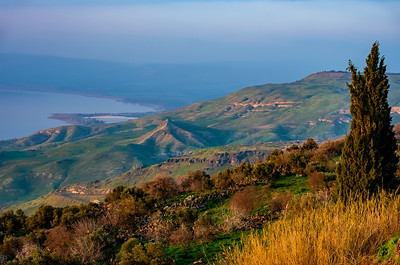 From the Golan Heights