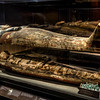 Coffin and mummy of Ankhhap