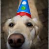 """Happy birthday to you!"""