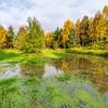 Denlethen Pond