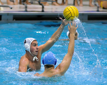 Tiger Water Polo -  CV 2013