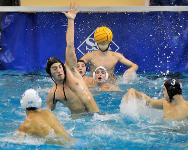 Tiger Water Polo -  09/28/13