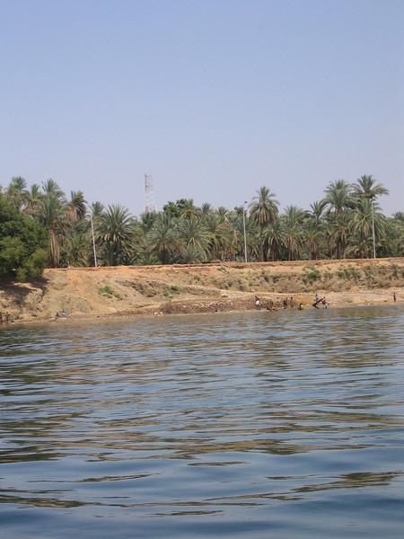 066 - local kids swimming