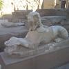 152 - sphinx