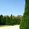 08 - green trees