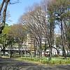 012 - park
