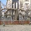 018 - Memorial Tree