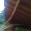 10 - blurry pic