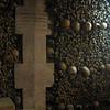014 - bones