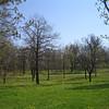 09 - Kadriorg park
