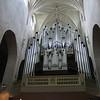 07 - organ