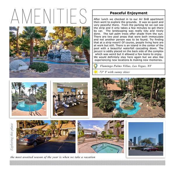 Amenities at our Air BnB, Flamingo Palms Villas, Las Vegas