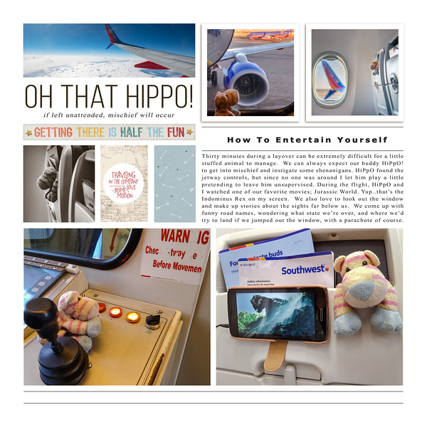 Hippo on the flight to Las Vegas