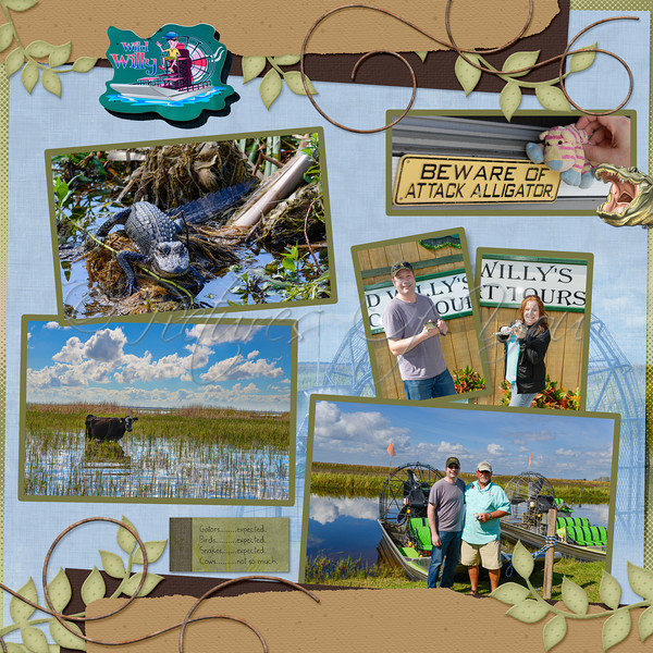 Wild Willy's Airboat Tour 2