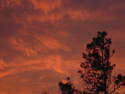 Cedargate Sunset