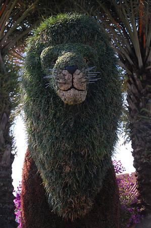 Busch Gardens - Lu