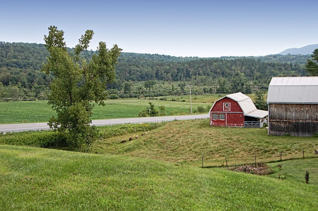 Manchester Farm