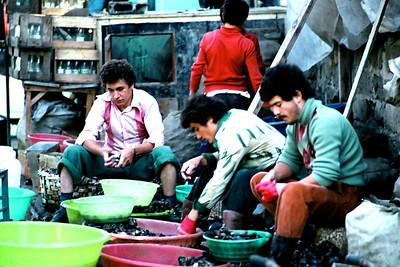 Midye ayıklayan balıkçılar, Istanbul, 1984