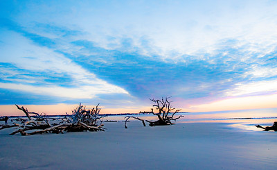 Blue and Lavender Sky at Jekyll Islands, Driftwood