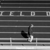 Litchfield Dragons High School Track Meet
