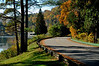 Allegany State Park,NY ( Red House Lake )<br /> Photo # 40