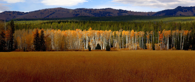 Gread Teton National Park   Photo # 82