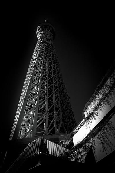 Tokyo SkyTree 5