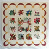 "2010 - Mimi's Album Quilt<br /> 70"" x 70""<br /> Hand appliqued, machine quilted, begun in 1996."