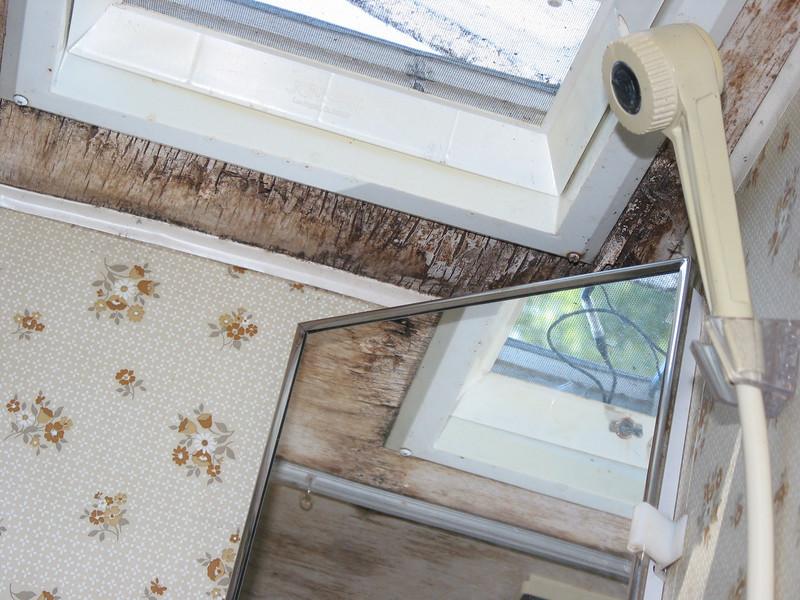 Leak around roof vent in bathroom.