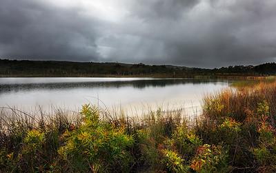 NSI 38 Brown Lake Morning
