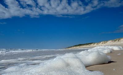 NSI 07 Main Beach