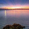 WP 68 Seaweed Sunrise