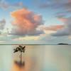 WP 60 King Island View