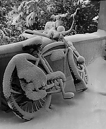 Snow Storm. Our Front Porch, PeaRidge.