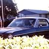 66 Mustang Debbi\'s Car