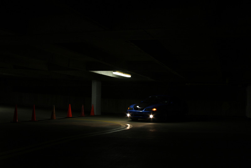 One of my personal favorites, even though it is a bit dark.  I like the bare suggestion of the car, the twinkling of the foglights, and the triangular shape of the subjects in the photo.  If you think it's too dark, your monitor sucks! LOL