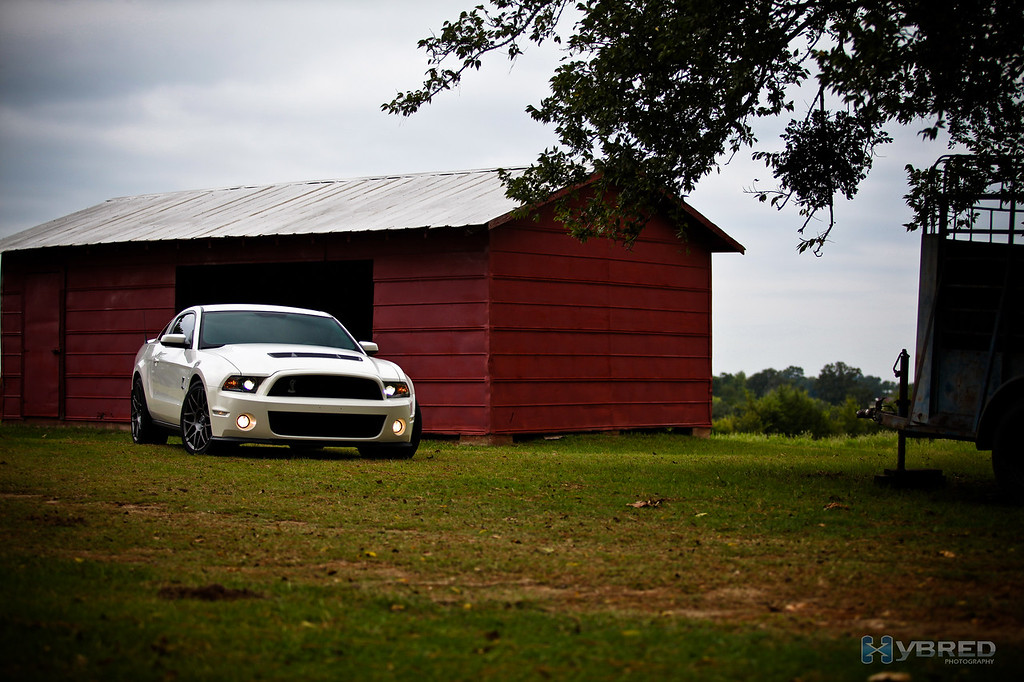 Pony out to pasture, Cat Springs TX