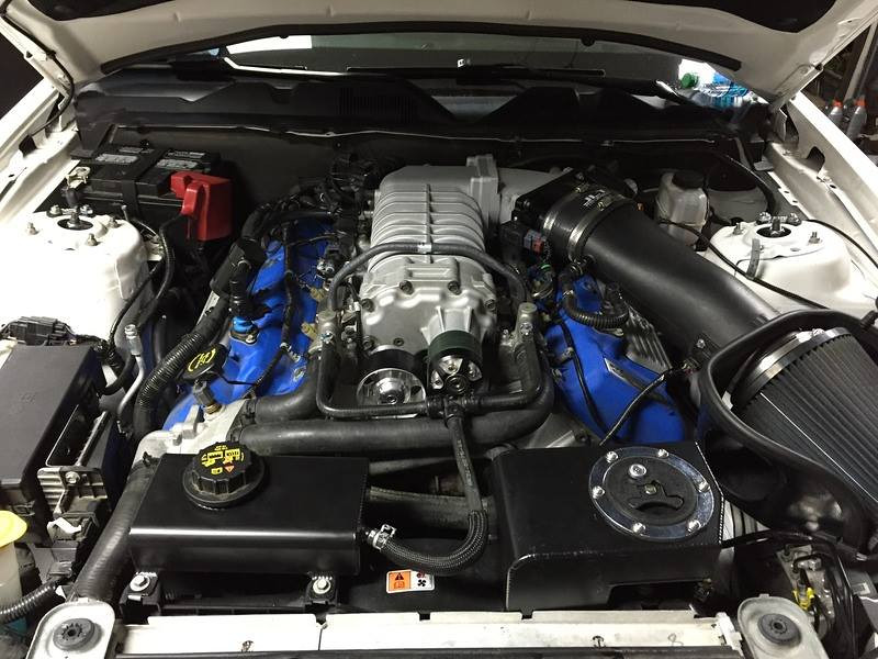 Post-mod engine bay