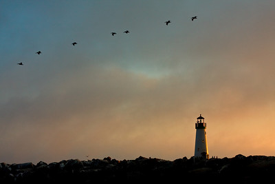 Walton Lighthouse in Santa Cruz, California against sunset.