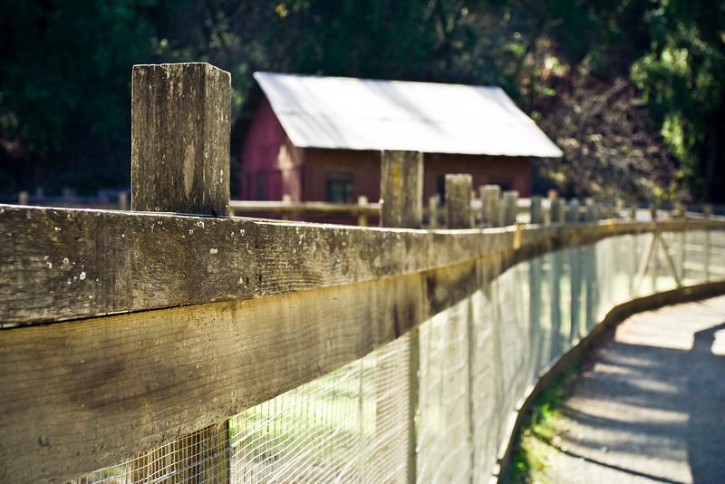 This picture taken at Rancho San Antonio Open Space Preserve in Santa Clara County, California.