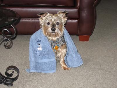 Jake modelling his towel!