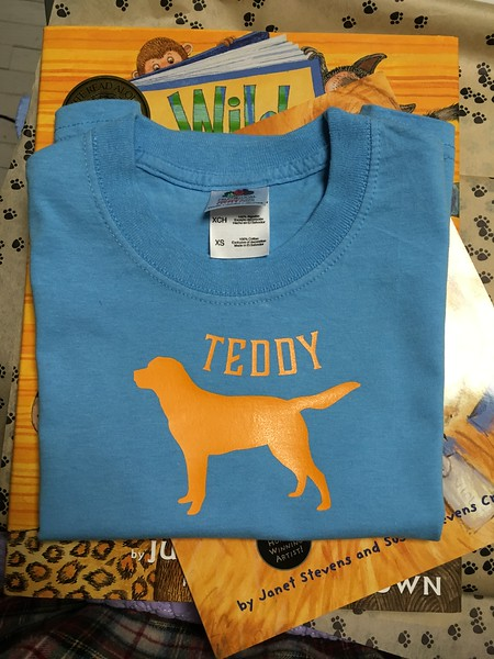 HTV Shirt for Teddy, not actually sewing!