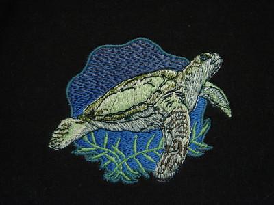 Jameson's sea turtle turtleneck