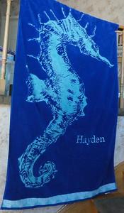 Hayden's towel