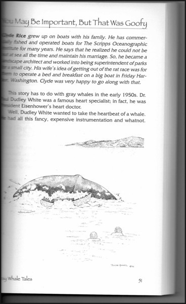 """Gray Whale"" illustration (page 51) from ""Whale Tales, Volume One"" by Peter J. Fromm, and story ""Very Sensitive"" by Bruce Leavitt.  (Whale tales Press, 1995)"