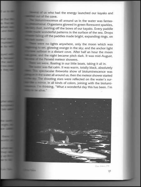"""Night Orcas"" illustration (page 19) from ""Whale Tales, Volume One"" by Peter J. Fromm, and story ""Never As Good As The First Time"" by Jim Nahmens. (Whale Tales Press, 1995)"