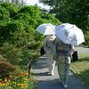 Paseando por el jardín en Ashikaga<br /> טיול נינוח בגן הפרחים באַשיקַגה