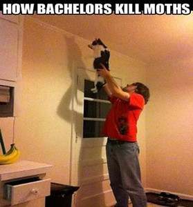 How Bachelours Kill Moths